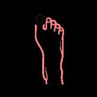 rekonstrukcja płytki paznokcia